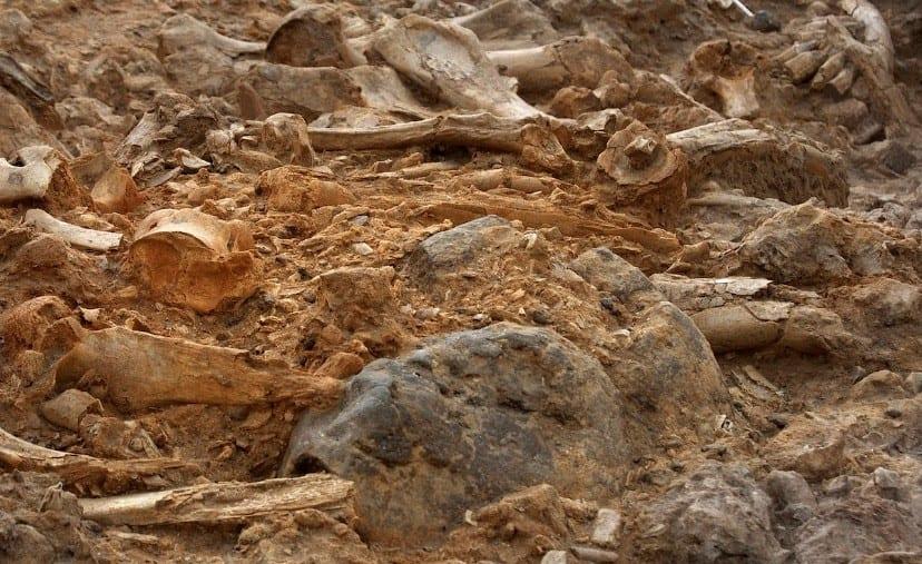 Karoo Formation